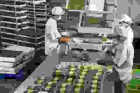 """Nông nghiệp cần những DN không chỉ """"mua đi bán lại"""""""