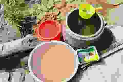 Tăng cường phòng, chống dịch bệnh do vi rút Zika và sốt xuất huyết