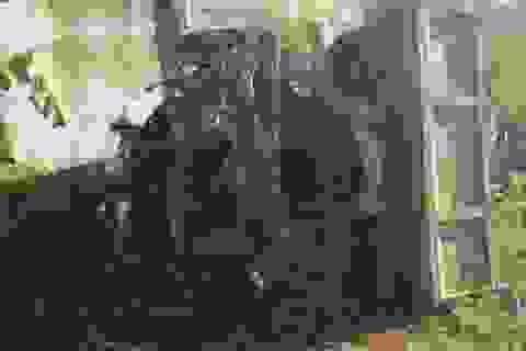 Tránh xe tải, xe ben tông 2 xe máy khiến 3 người thương vong.