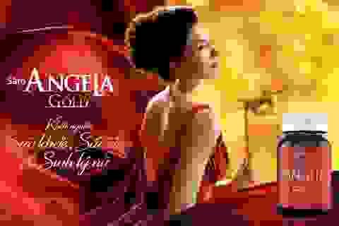 Sâm Angela Gold chính thức có mặt trên thị trường