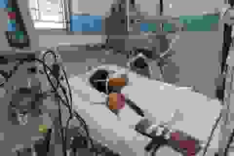 TPHCM: Một bệnh nhân tử vong vì sốt xuất huyết