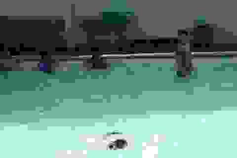 Cứu sống cháu bé bị đuối nước đã nổi dưới hồ bơi