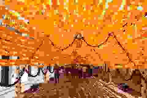 Tuyến phố đi bộ đẹp lãng mạn với hơn 1000 bông hoa giấy phủ kín