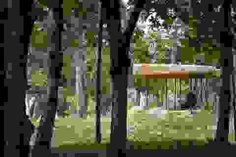 Chùa Đá Nha Trang - Top 7 thiết kế tôn giáo đẹp nhất