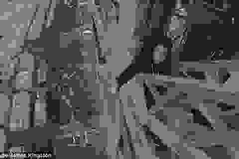 """Thót tim xem clip """"người nhện"""" leo tháp Eiffel bằng tay không"""