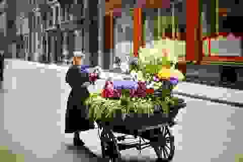 Ngắm Paris trong những thước ảnh màu hiếm hoi 100 năm trước