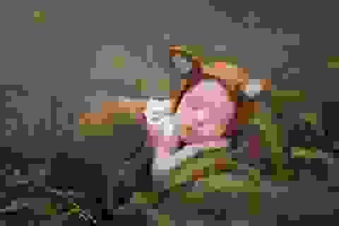 """Ngắm """"những thiên thần có thật"""" trong giấc ngủ say"""