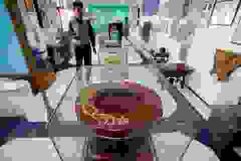 Khám phá bảo tàng nhà WC duy nhất trên thế giới