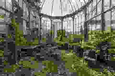 Vẻ đẹp ghê rợn đến ma mị của những công trình bị bỏ hoang
