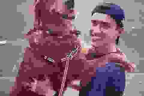 """""""Nàng chó"""" thân thiện nhất thế giới thích ôm ấp du khách lạ"""