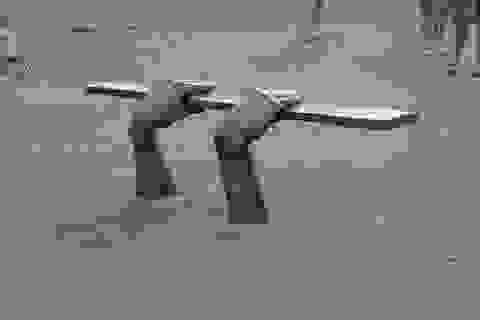 """Khi ghế ngồi nơi công cộng trở thành những """"tác phẩm"""" độc lạ và sáng tạo"""
