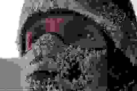 Ở vùng đất nơi hơi thở cũng bị... đóng băng