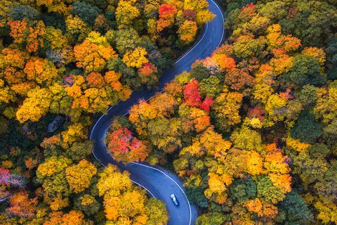 Vẻ đẹp mê mẩn của mùa thu nước Mỹ nhìn từ trên cao
