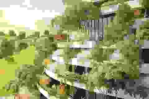 Khách sạn kỳ lạ với thảm thực vật xanh mướt phủ kín xung quanh