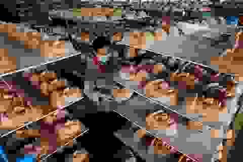 """Xưởng sản xuất mặt nạ tân Tổng thống Mỹ Donald Trump """"sốt hàng"""""""