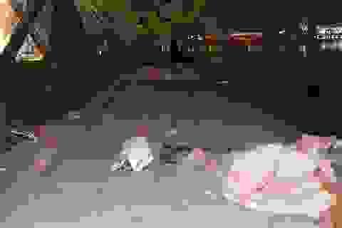 """Hồ Gươm """"ngập ngụa"""" trong rác thải sau giao thừa"""