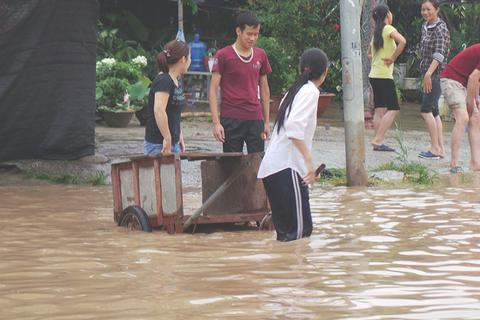 """Hàng nghìn người vật vã """"lội sông"""", bắt cá ở Đại lộ Thăng Long"""