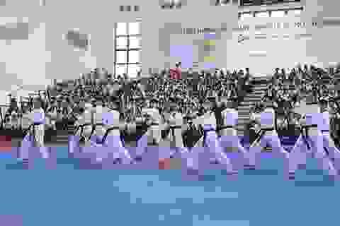 Taekwondo Việt Nam được Bulgaria mời sang huấn luyện