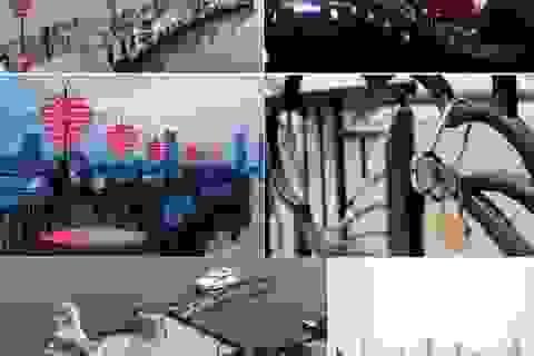 Nên du lịch Đà Nẵng hay Nha Trang với 4 triệu đồng?