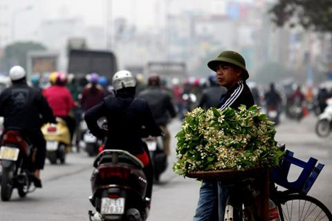 Phố phường Hà Nội ngát hương bưởi tháng 3