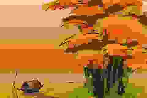 Yêu quê hương Việt Nam từ những điều nhỏ nhất