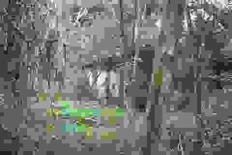 Ngôi làng 12 hộ dân bị lãng quên?