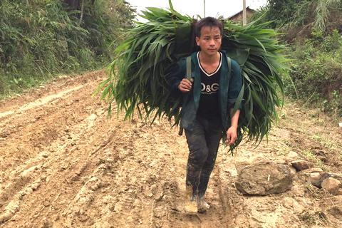 """Cung """"đường chết"""" ở miền tây xứ Nghệ: Thành lập đoàn kiểm tra hiện trường"""