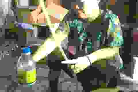 Bắt cơ sở sản xuất dấm gạo từ... axít và nước lã