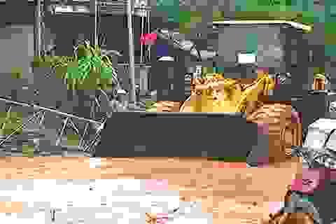 Mưa lớn gây ngập lụt, sạt lở trên quốc lộ