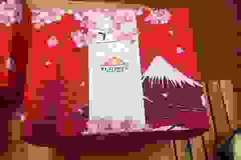 Độc đáo hộp quà tết bò Fuji gây sốt thị trường