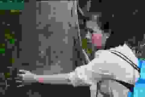 Hủy bỏ quyết định trái pháp luật của UBND quận Hoàng Mai