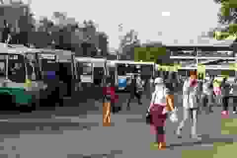 TPHCM: Đặt hàng 2 tuyến xe buýt phục vụ dân sinh huyện đảo Cần Giờ