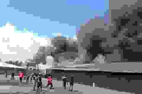 TPHCM không duyệt mua trực thăng chữa cháy