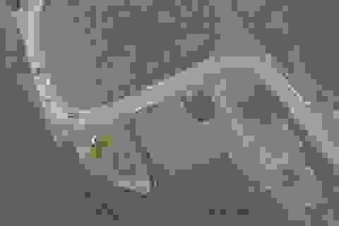 Không chấp nhận đề nghị trả lại 2.000 tấn rác của Đa Phước