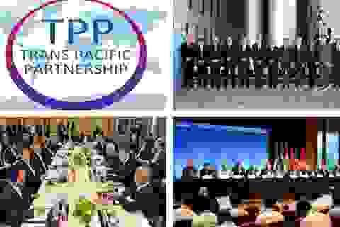 Điểm mặt hàng loạt thách thức khi Việt Nam gia nhập TPP
