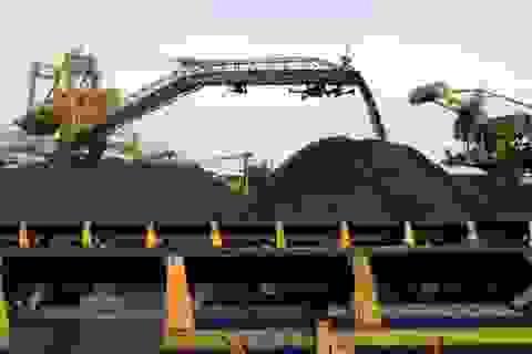 Nhập khẩu than sẽ tăng liên tục trong tương lai