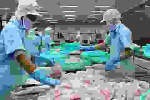 """Trung Quốc thêm rào cản, doanh nghiệp thuỷ sản """"than"""" khó khăn"""