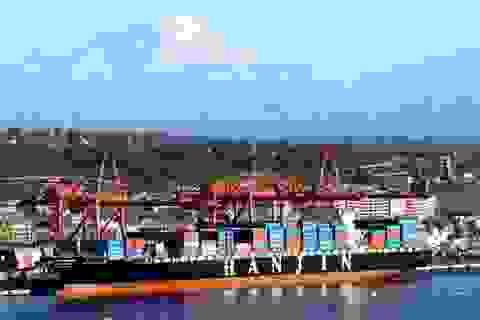 Bộ Giao thông chỉ đạo hỗ trợ doanh nghiệp vụ đại gia vận tải biển phá sản