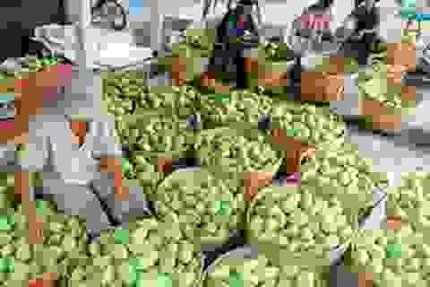 Trung Quốc nhập khẩu khoảng 70% rau quả của Việt Nam