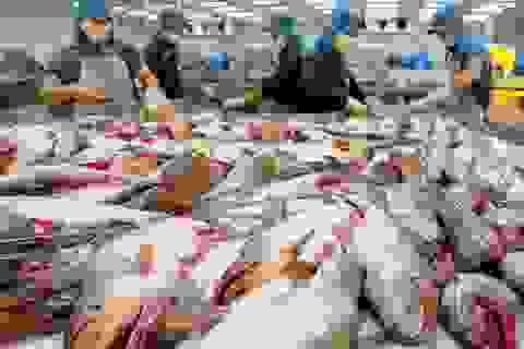 """EU lại """"rút thẻ vàng"""" với thuỷ sản Việt Nam"""