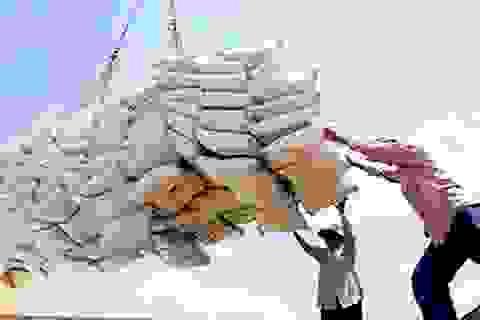 Xuất khẩu gạo tiếp tục gặp nhiều khó khăn