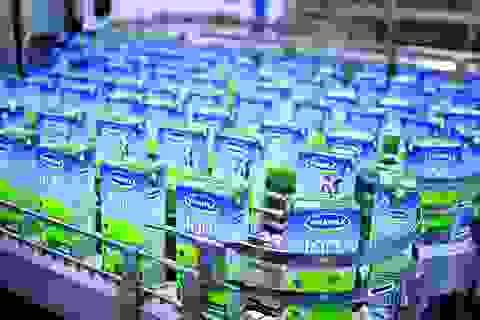 SCIC chưa nhận được đề nghị mua cổ phần Vinamilk từ tỷ phú Thái Lan