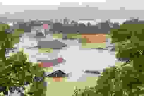 Việt Nam cam kết cùng cộng đồng quốc tế chống lại biến đổi khí hậu
