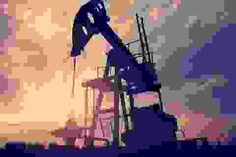 Giá dầu xuống dưới 30 USD/thùng là vô lý