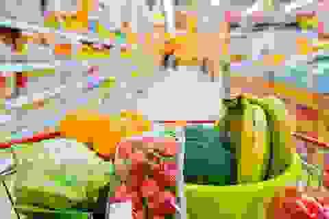 Giá lương thực thế giới chạm đáy trong 7 năm