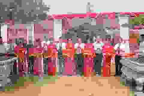 Công nhận Cây Di sản Việt Nam cho 9 cây mang nguồn gene quý