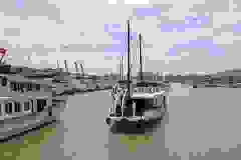 Nâng tầm Cảng thủy nội địa Tuần Châu, đón tàu khách quốc tế