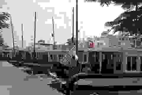 Dừng đóng mới tàu du lịch trên vịnh Hạ Long, vịnh Bái Tử Long