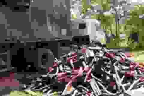Liên tiếp bắt giữ 2 xe vận chuyển gỗ trắc trái phép