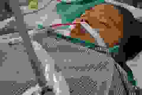Bị nhiễm độc thai nghén, sản phụ giành giật sự sống từng giờ